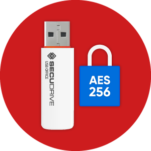 Hardware-encrypted USB Flash Drives with DRM   SECUDRIVE